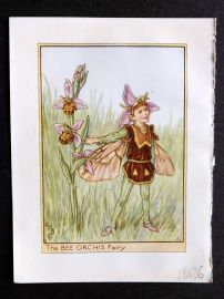 Cicely Mary Barker C1940s Flower Fairy Print. Bee Orchis Fairy